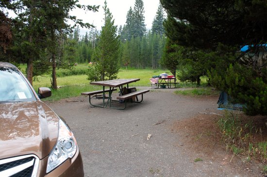 Bridge Bay Campground: Out campsite on Loop F