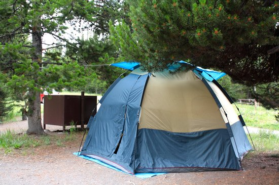 Bridge Bay Campground: tent site on loop F