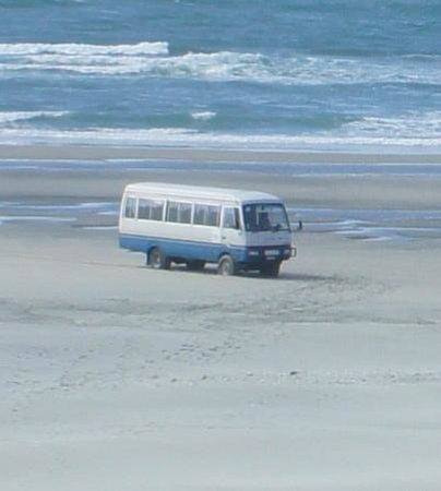 Farewell Spit Nature Experience: The bus you really get....