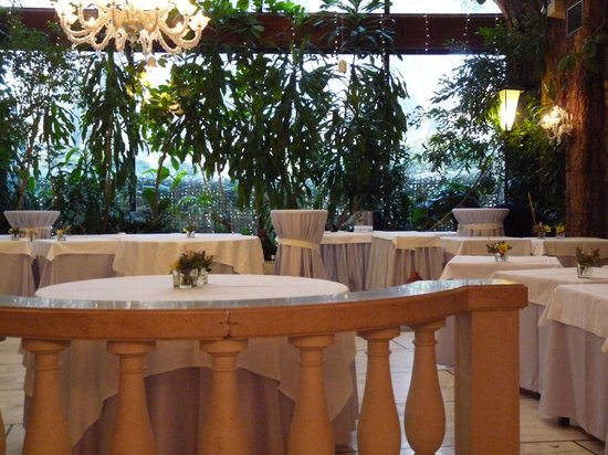 Wintergarten bild von ristorante giardino d 39 inverno venedig tripadvisor - Giardino d inverno permessi ...