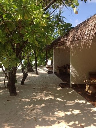 VOI Maayafushi Resort: beach bungalow