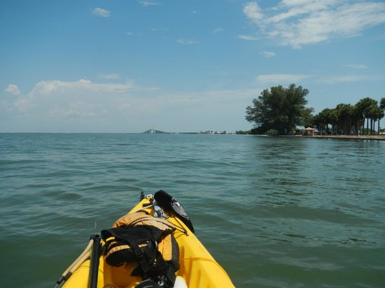 Florida Eco Adventures Day Tours Tampa Top Tips Before
