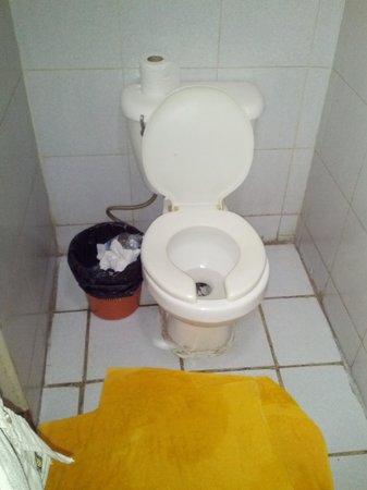 Hotel Ixil: WC