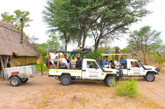 Bomani Tented Lodge: Safari