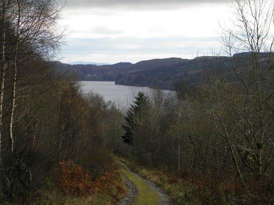 Lake Vyrnwy Hotel & Spa: View from Walk