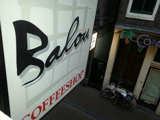 Coffeeshop Balou