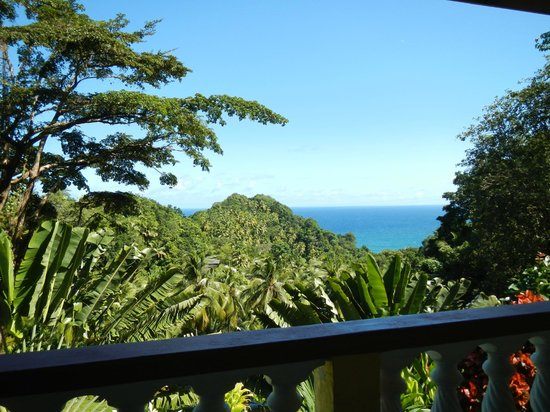 Domcan's Guesthouse : View
