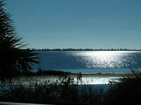 Tallahassee, FL: St Marks National Wildlife Refuge