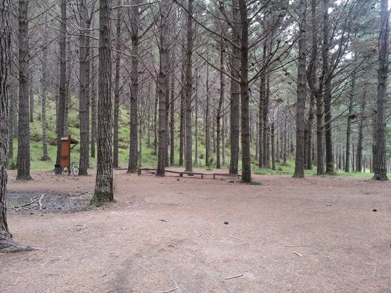Woodhill Mountain Bike Park: There are rest areas on the trail if you wish to take a short break.