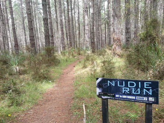 Woodhill Mountain Bike Park: For those who are alot more adventurous.