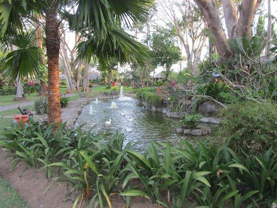 Prama Sanur Beach Bali: Pond within the hotel grounds