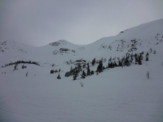 Toby Creek Adventures Ltd.: Snow basin