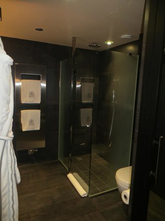 Sofitel Legend The Grand Amsterdam: very spacious shower with hermes products