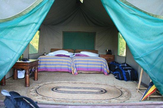 Mumbo Island: Tent 1 inside
