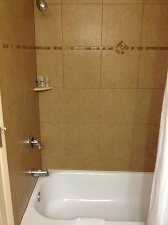 Rosen Centre Hotel: shower
