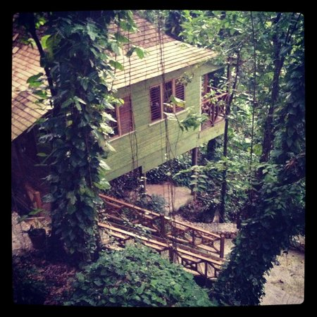 "Kanopi House: View from ""Upper Deck"""