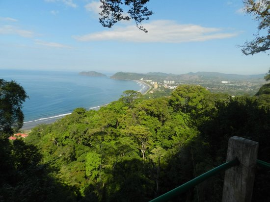 Jaco Canopy Tour: View from the first platform