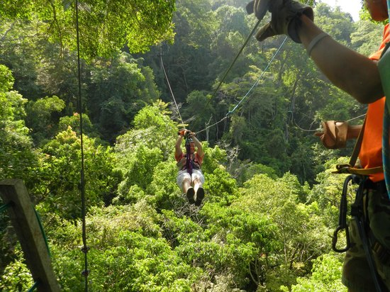 Jaco Canopy Tour: In action !