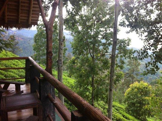 98 Acres Resort: Good Morning View