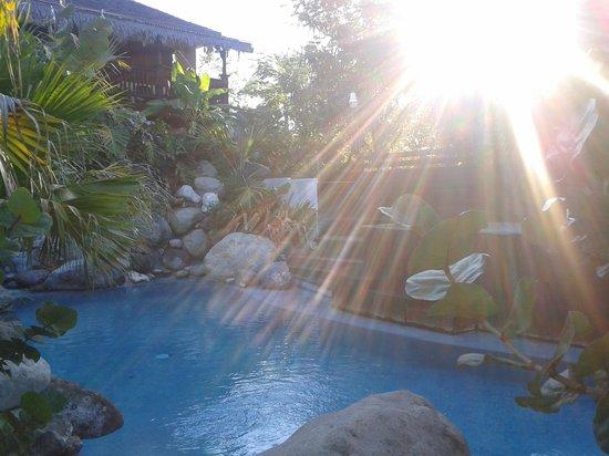 Villas Sur Mer: Amazing pool