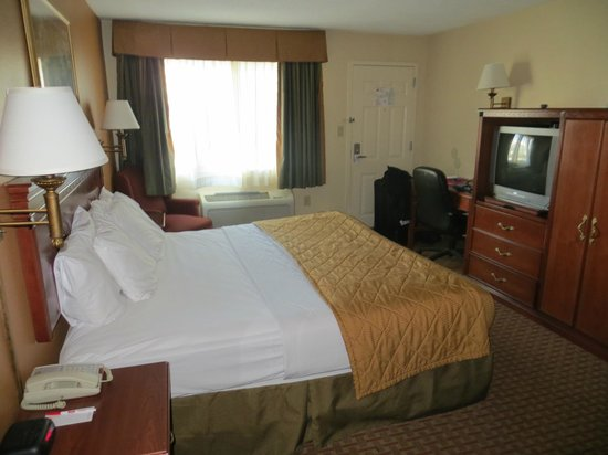Econo Lodge Downtown: Our room
