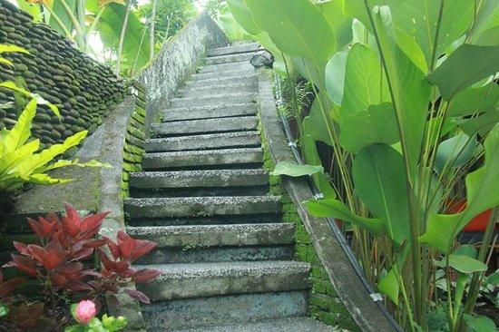 Jati Home Stay (Ubud, Indonesia) - Review Hotel ...