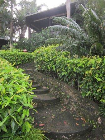 Lembeh Resort: steps