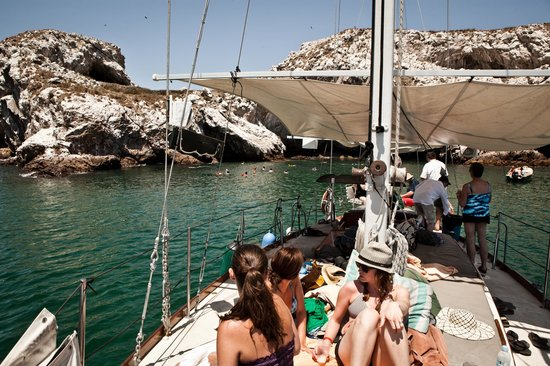 ClubHotel RIU Jalisco: protected island on sailing excursion