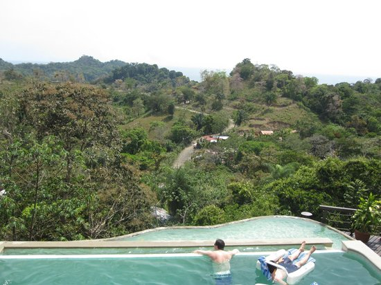 Gaia Hotel & Reserve: View from the pool