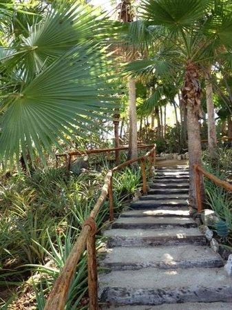 Las Brisas Huatulco: Exploring the resort gardens...
