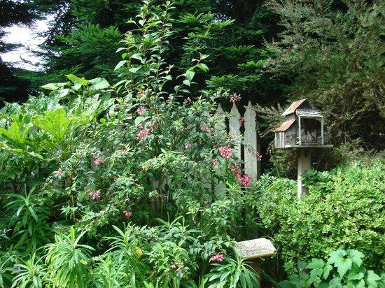 Cambria Pines Lodge: Lush, Beautiful Gardens