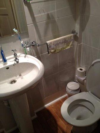 Shirley Hotel: 單人規格的浴廁