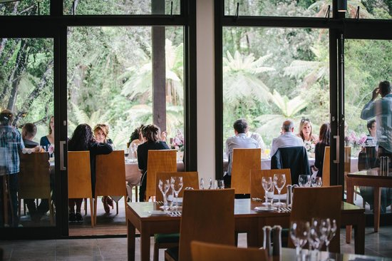 Te Waonui Forest Retreat: Canopy restuarant