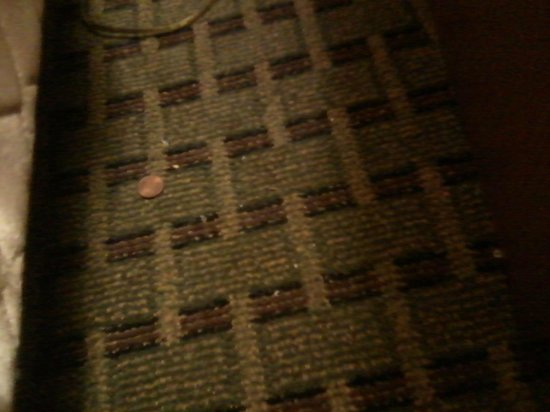 Comfort Inn Franklin: Filthy carpet