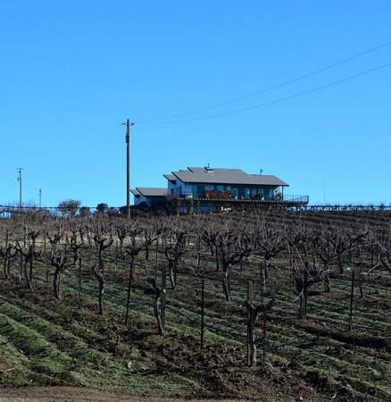 Christopher Joyce Vineyard and Inn: View from the road leading to the driveway