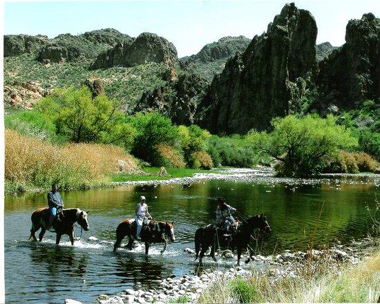 Saguaro Lake Guest Ranch: Horseback Riding
