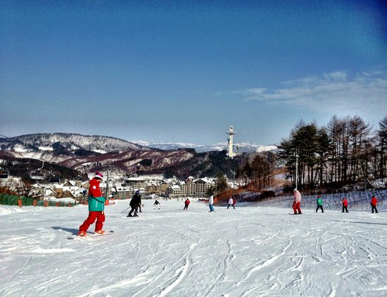 Holiday Inn and Suites Alpensia Pyeongchang Suite: View from the top of the Beginners' slope