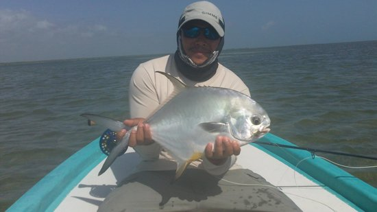 Cancun Fly Fishing Light Tackle and Fly Fishing Charters. : permit on th flats