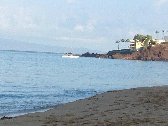 Westin Maui Resort And Spa: Beach view Black Rock
