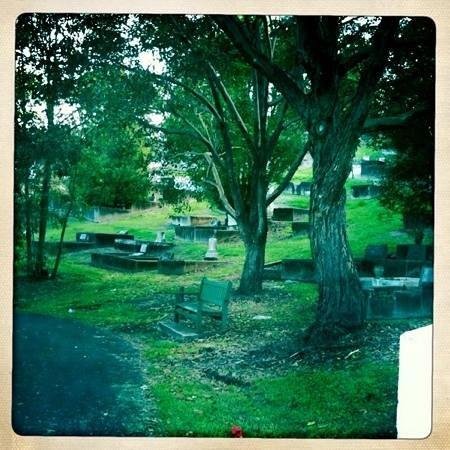 Toowong cemetery toowong cemetery for 207 birdwood terrace toowong