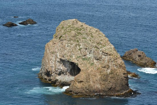 Nugget Point: Offshore cave