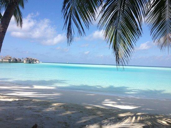 Gili Lankanfushi Maldives: 1