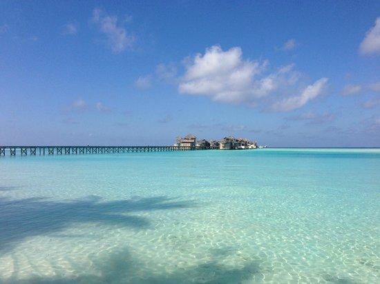 Gili Lankanfushi Maldiverna: 3