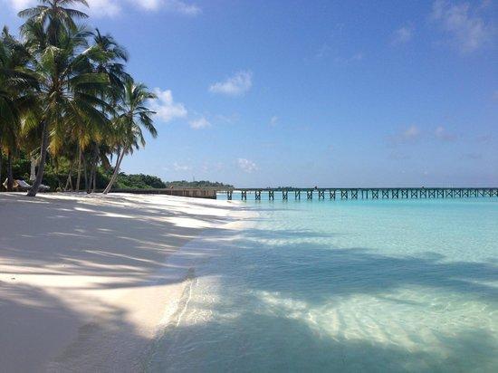 Gili Lankanfushi Maldiverna: 2