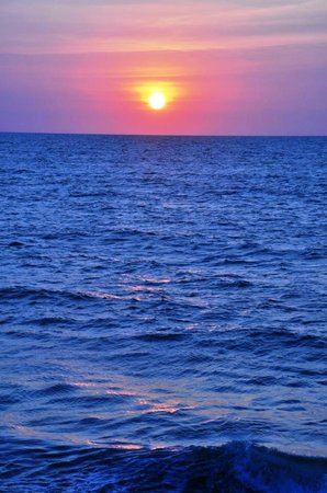 Vivanta by Taj Bekal: beach sunset