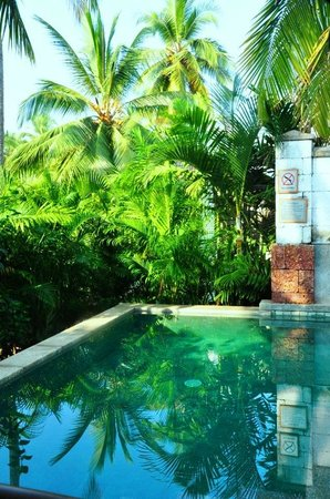 Vivanta by Taj Bekal: plunge pool