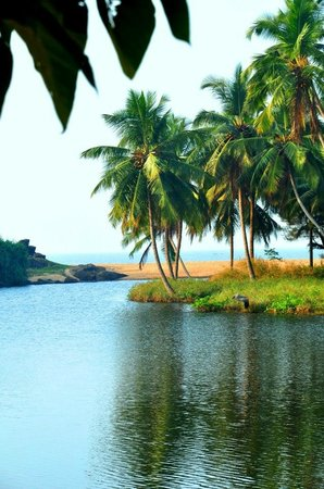 Taj Bekal Resort and Spa, Kerala: where the river meets the sea