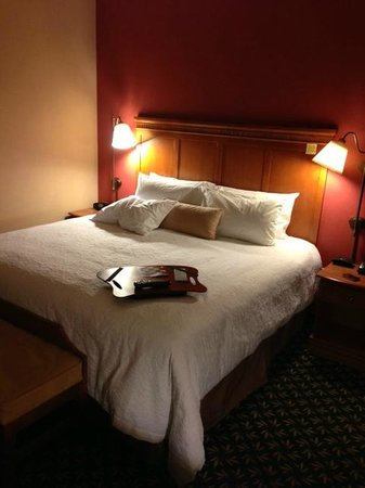 Hampton Inn & Suites Windsor - Sonoma Wine Country: King room - great bedding