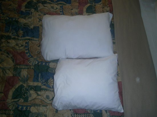 Days Inn & Suites Mesa: standard pillow vs. micro pillow.