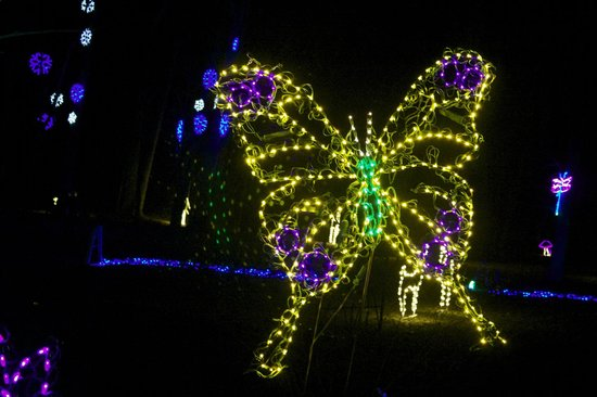 Meadowlark Botanical Garden: Butterfly light display